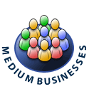 Medium Business - 25 to 100+ employees