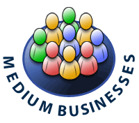 Medium Business IT Consulting